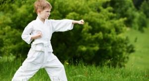 TNX-647-karate